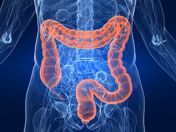 Probiotics Can Help with Regularity