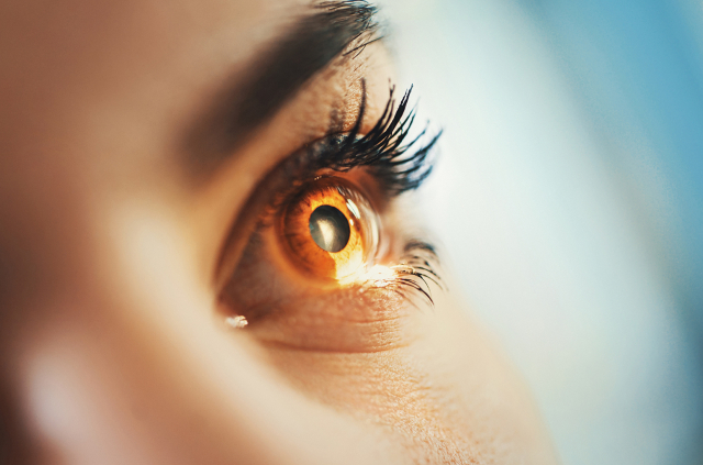 Blue Light is an Emerging Risk Factor for Ocular Health